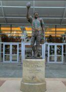 Dan Marino Statute